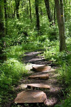 Oak Knoll Wildlife Sanctuary