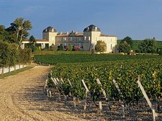 The Best Vacation Destinations In France – Travel In France Best Vacation Destinations, Best Vacations, Visit Bordeaux, Wine Vineyards, Photo Images, Visit France, In Vino Veritas, Italian Wine, Photography