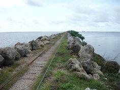 Bocas de ceniza // Barranquilla // Colombia