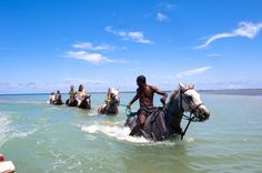 Family riding horses in the ocean