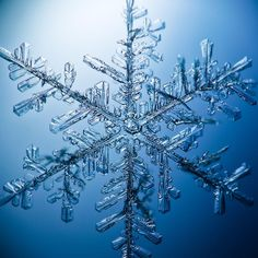 A large snow flake Photo by Ian Stuart Forsyth — National Geographic Your Shot