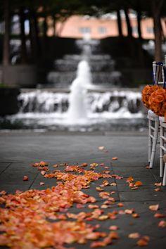 e rose petals Blur Image Background, Desktop Background Pictures, Studio Background Images, Background Images For Editing, Light Background Images, Picsart Background, Background For Photography, Photo Backgrounds, Hd Background Download