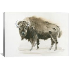 iCanvas Buffalo Bill Wrapped Canvas (43 AUD) ❤ liked on Polyvore featuring home, home decor, wall art, southwest home decor, canvas painting, handmade wall art, southwestern wall art and southwest wall art