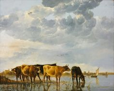 Коровы на реке  1650-55, 59х74. Aelbert Cuyp (1620-1691)