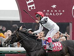 Golden Horn, racing just behind the pacemaker, took off when asked in the stretch to comfortably win the Qatar Prix de l'Arc de Triomphe (Fr-I) at Longchamp Oct. 4. Favorite Treve finished fourth.