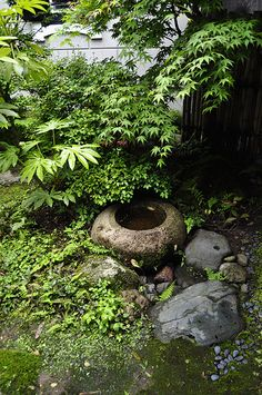 Japanese Garden - Tsukubai, Water basin, Kanazawa / green home.   This is a perfect way for little critters to get a drink of water.