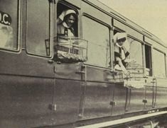 (Courtesy of The Great War Primary Documents Archive www.gwpda.org) Canaries, used to soothe wounded aboard a hospital train (Birds and the War, Skeffington & Son, London, 1919)