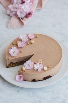 Fancy Desserts, No Bake Desserts, Gelato Cake, Beautiful Desserts, Sweets Cake, Yummy Eats, Pretty Cakes, Mini Cakes, Let Them Eat Cake