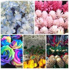 Colombian flowers