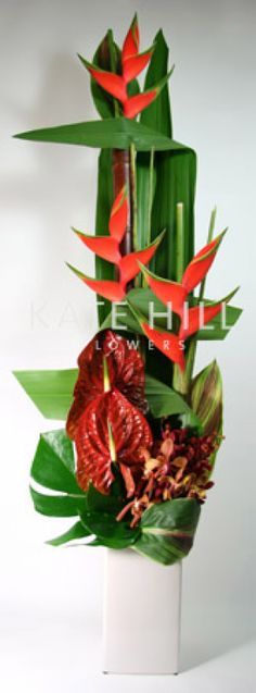 Modern Tropical Arrangement    A vibrant, contemporary design styled with tall red Bamboo, tall Gymea foliage, Heliconia Crab Claws, large red Antherium Lilies, Mokara Orchids and lush Tropical foliages.         Designed into a tall ceramic container, this is a perfect gift for the person with a love for modern interiors or as an unforgettable corporate gift.    The height of this arrangement starts at 140cm and it will last for a minimum of a week.