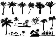Summer set - Vector palms summer clipart. Free vector collection of royalty-free images of beach silhouettes – most of them palm trees, fan palm, hemp palm, oil-palm, coconut tree and more. Vector palms clipart. This is a sample of full pack which contains 35  designs. Download full pack visit - http://all-silhouettes.com/vector-palms/. More Free Vector Graphics, www.123freevectors.com
