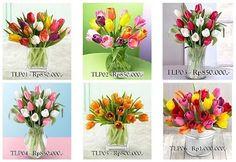 Tulip Collection - Florist Jakarta - Online Flower Shop :: Hotline 021-60503980, 021-94229037, Pin BB: 320F2810