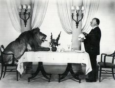 Alfred Hitchcock serving tea to Leo the Lion (the mascotfor the Hollywood film studio MGM), 1957