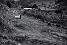 Post Boda en el campo.KaryFotografia.