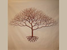 African Acacia Wire Tree