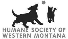 """If you haven't yet, go """"like"""": The Humane Society of Western Montana's Facebook page! Cute pictures and forever families, what more could you ask for?"""