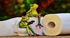 Buyers Guide for the Best Toilet Buyers Guide, All The Way, Toilet, Good Things, Christmas Ornaments, News, Holiday Decor, Flush Toilet, Christmas Jewelry