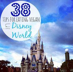 38 Tips for Eating Vegan in Disney World