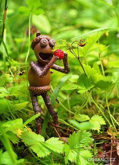 Houby nejím, nechutnají mi, ale jakmile rostou, neodolám a strašně rád je chodím hledat. Občas nějaké donesu manželce (jediná vrodině je jí) – to hlavně když jdu do lesa sdětmi, které houbaření strašně baví (to tam pak žádnou houbu nesmíme nechat). Většinou je ale nechám na místě a stačí mi, že si je vyfotím, nebo …