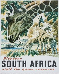 South Africa (artist: Burrage) Netherlands c. 1930 - Vintage Poster (Art Print Available) South Africa Safari, Visit South Africa, Vintage Art Prints, Vintage Travel Posters, Retro Posters, Africa Art, Game Reserve, Illustrations, Fauna
