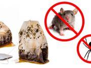11 život zachraňujících tipů a triků, které Vám ohromně ulehčí život! Animals, Animales, Animaux, Animal, Animais