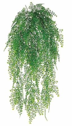 This plastic hanging green maidenhair fern bush requires no maintenance. Afloral.com has a variety of faux greenery for stress-free hanging baskets in your home.