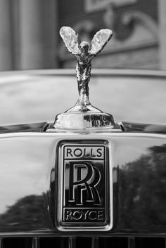 For the first seven years Rolls-Royce cars had no mascot at all on top of their radiator. - Mike Fox and Steve Smith