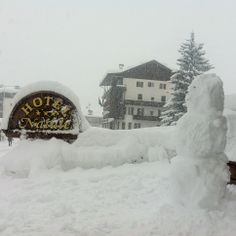 Our Guests enjoy the snow so much!! :)