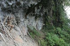 moimango the mummy in papua new guinea