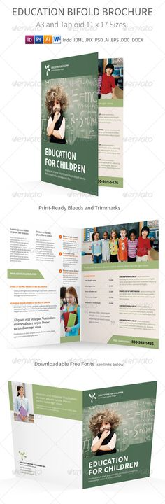 BiFold Brochure   Brochures Brochure Template And Indesign