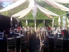 outdoor-drape-swags-ideas-for-wedding.001