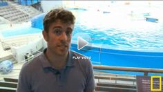@National Geographic Young Explorer and marine biologist, Eric Patterson uses a new and non-invasive method to test dolphin health at the National Aquarium.
