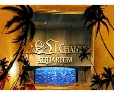 Tickets for Aqua venture with Lost Chambers for Sale in Dubai