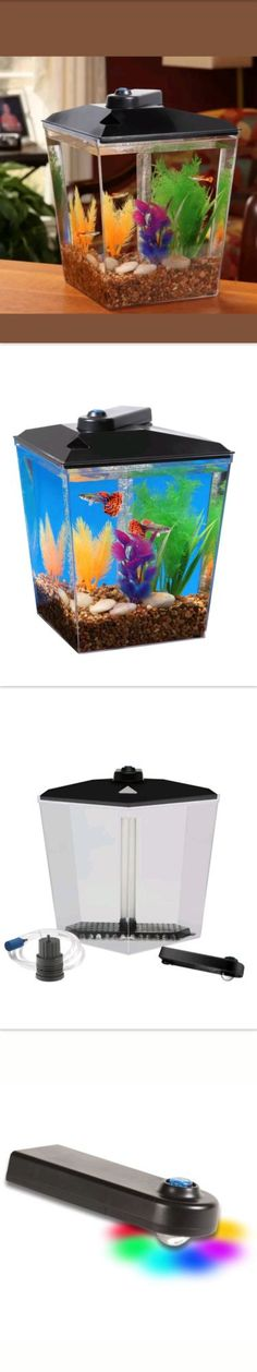 Aggressive Aquaclear Activated Carbon Insert Fish & Aquariums 3-pack Pet Supplies