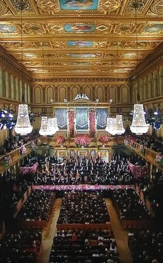The music...Vienna is one of the birthplaces of great music!
