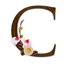 PAPIROLAS COLORIDAS: letras para Martin Eduardo English Alphabet, Bad Feeling, Letter Art, Letters And Numbers, Clip Art, Lettering, Coffee Break, Empty, Monogram