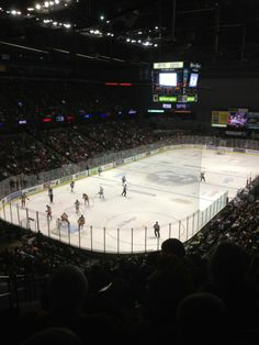 Catch a Grand Rapids Griffins Hockey game, or a concert coming to the arena!