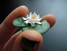 white water lily 2 by lily-inabottle.deviantart.com on @deviantART