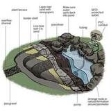Image detail for -backyard pond overview