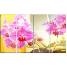 DesignArt 'Blooming Purple Orchid Flowers' 4 Piece Photographic Print on Canvas Set