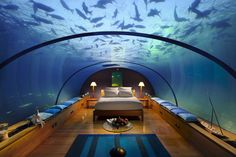 Slapen tussen de vissen - hotel Conrad, Malediven.