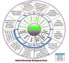 Blood Heart, Body Heat, Breakfast Time, Remedies, Herbs, Nutrition, Home Remedies, Herb, Medicinal Plants