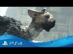 The Last Guardian, il trailer dell'attesissimo videogame d'autore  #follower #daynews - http://www.keyforweb.it/the-last-guardian-il-trailer-dellattesissimo-videogame-dautore/