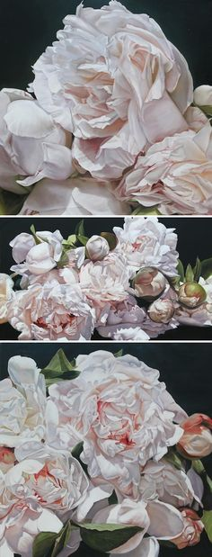 Giant still life paintings of roses, by Thomas-Darnell