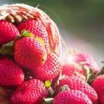 imagen de un cesto de fresas