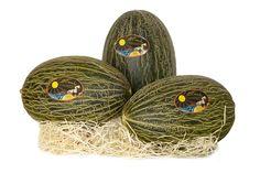 3 melones 3.