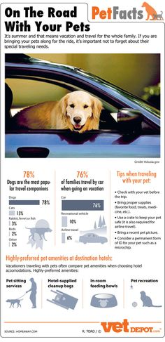On the road with your pets! www.vetdepot.com/traveling-with-pets-infographic.html#