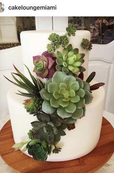 Rustic Cake, Succulents, Plants, Succulent Plants, Flora, Planters