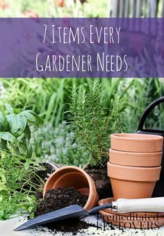 7 Tools Every Gardener Needs- Keep these 7 basic tools on hand to make gardening easier and more efficient. Learn how to properly maintain garden tools as well!