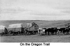 oregon pioneer south path - Google Search
